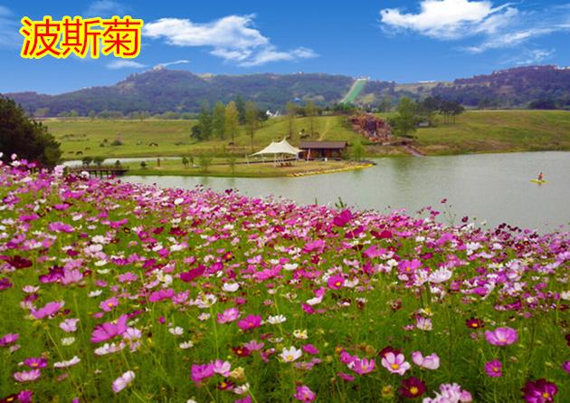 4月11日消息:4月8日,上海旅游度假区申迪生态园上农嘉年开园迎客,整个
