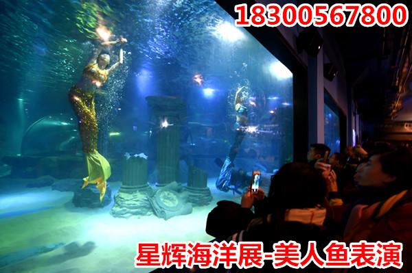 壁纸 海底 海底世界 海洋馆 水族馆 游戏截图 600_399