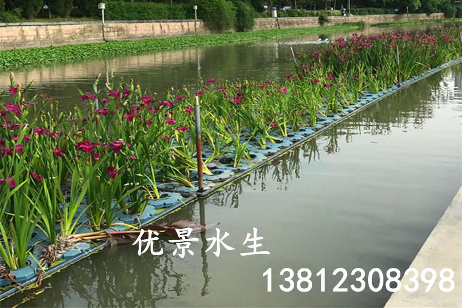 木里藏族人工生态浮岛包安装